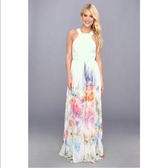 7013240267a107 Ted Baker Light Green Beula Floral Maxi Dress 1. M_5bf4537a5c4452eddd72aa0f